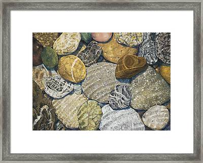 Beach Rocks Of The Puget Sound  Framed Print