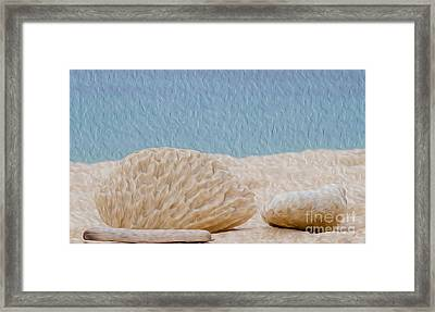 Beach Rocks At Seven Mile Beach In Grand Cayman Framed Print by Kenneth Montgomery