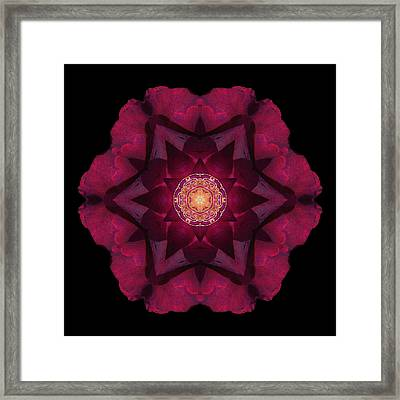 Framed Print featuring the photograph Beach Rose I Flower Mandala by David J Bookbinder