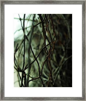Beach Rust Abstract Framed Print by Rebecca Sherman