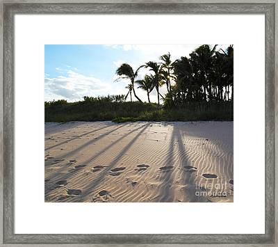 Beach Shadows Framed Print by Michelle Wiarda