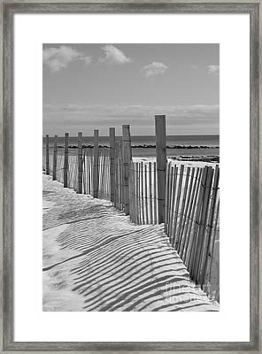 Beach Snow  Framed Print by Catherine Reusch Daley