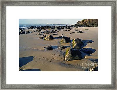 Beach Stones I Framed Print by Cassandra Buckley
