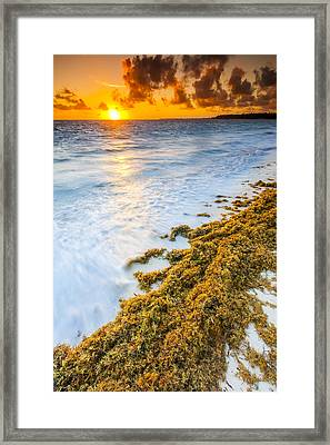 Beach Sunrise Framed Print by Sebastian Musial