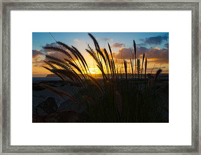 Beach Sunset Framed Print by Marc Bottiglieri