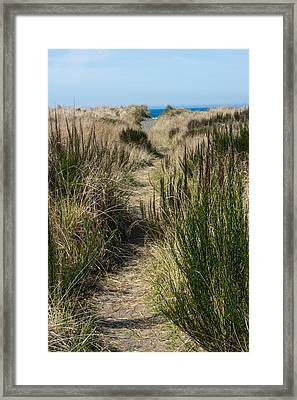 Beach Trail Framed Print