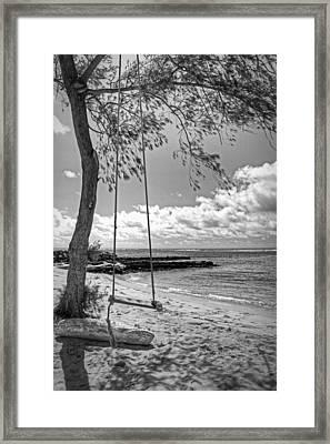 Beach Tree Swing Framed Print