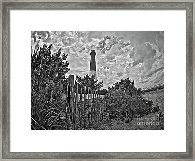 Beach View Of Barney In Black And White Framed Print by Mark Miller