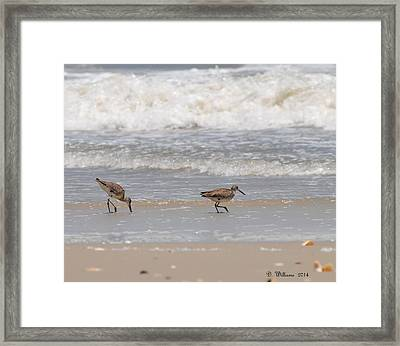 Beach Walk Framed Print