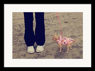 Dog Sweaters Framed Prints