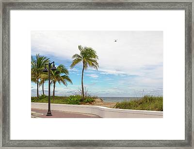 Beach With Palm Trees And A Helicopter Framed Print