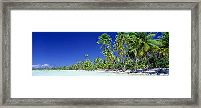 Beach With Palm Trees, Bora Bora, Tahiti Framed Print by Panoramic Images