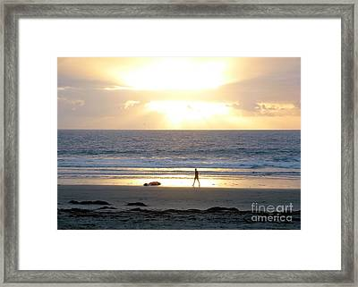 Beachcomber Encounter Framed Print by Barbie Corbett-Newmin