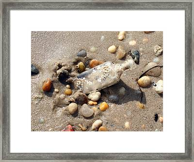 Framed Print featuring the photograph Beached Bottle by Karen Silvestri