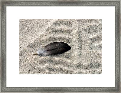 Beached Feather Framed Print by Christopher Holmes