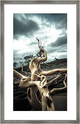 Beached Heaven  Framed Print