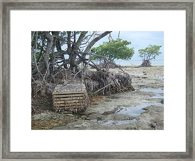 Framed Print featuring the photograph Beached Lobster Trap by Robert Nickologianis
