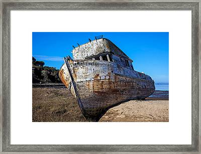 Beached Point Reyes Framed Print