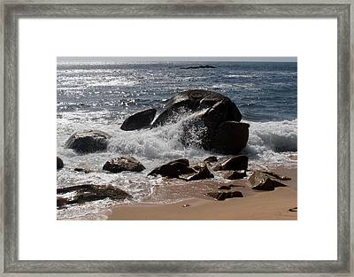 Beaching Blubber Framed Print