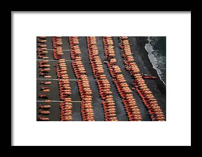 Parasol Framed Prints