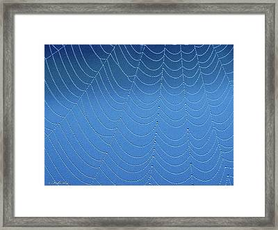 Beaded Lacework Framed Print