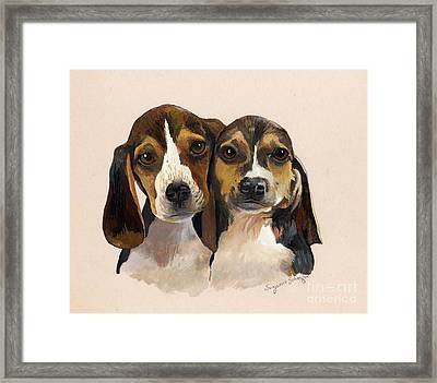 Beagle Babies Framed Print by Suzanne Schaefer