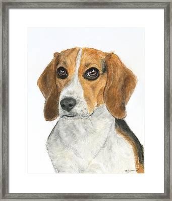 Beagle Painting Framed Print