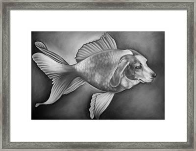 Beaglefish Framed Print by Courtney Kenny Porto