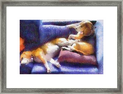 Beagles On The Couch Framed Print by Natalia Corres
