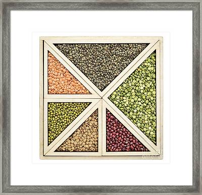Beans And Lentils Abstract Framed Print by Marek Uliasz