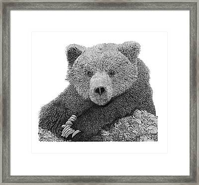 Bear 2 Framed Print