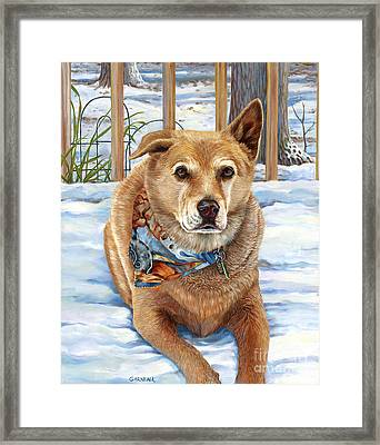 Bear Framed Print by Catherine Garneau