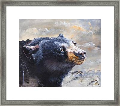 Four Winds Bear Framed Print by J W Baker