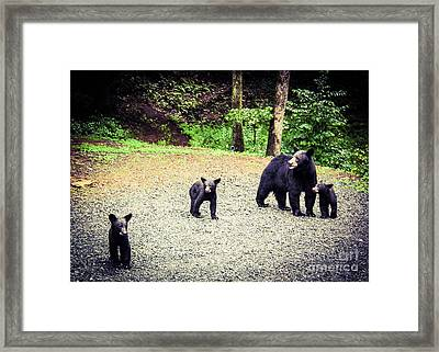 Bear Family Affair Framed Print