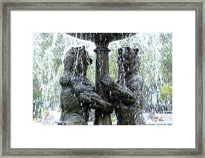 Bear Fountain Framed Print