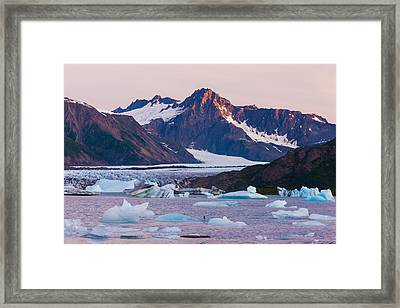 Bear Glacier Lake With Icebergs At Framed Print
