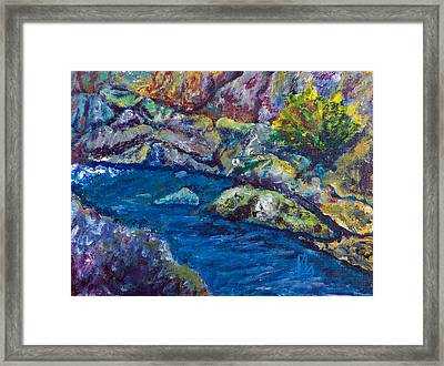 Bear Hole Framed Print