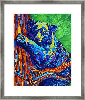 Bear Hug Framed Print by Derrick Higgins