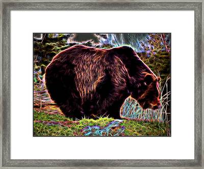 Colorful Grizzly Framed Print