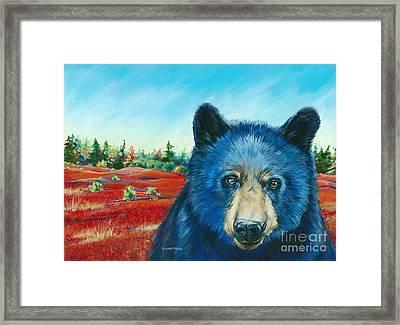 Bear In The Blueberies Framed Print