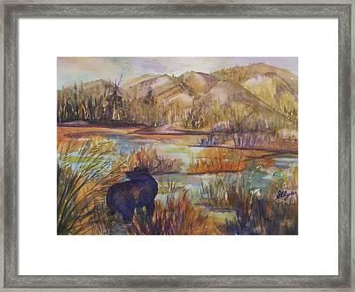 Bear In The Slough Framed Print by Ellen Levinson