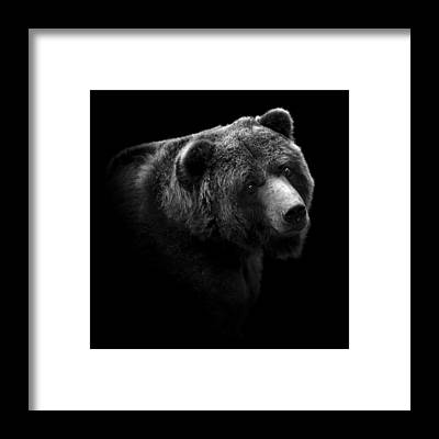 Grayscale Framed Prints