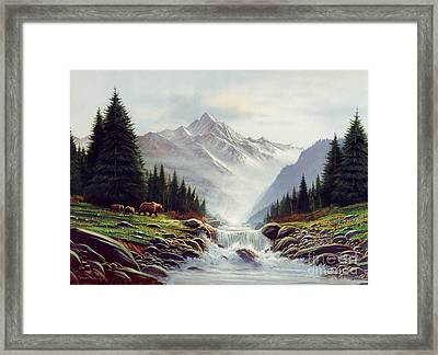 Bear Mountain Framed Print