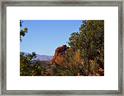 Bear Mountain Trail Framed Print