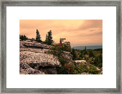 Bear Rocks Sunset Framed Print by Diana Boyd