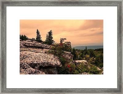 Bear Rocks Sunset Framed Print