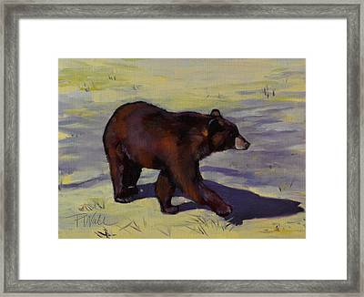 Bear Shadows Framed Print