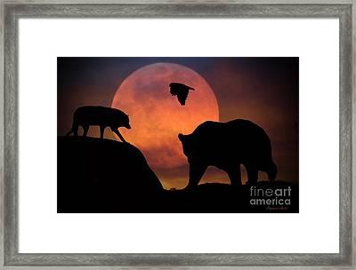 Bear Wolf And Hawk Framed Print