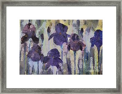 Bearded Irises Framed Print