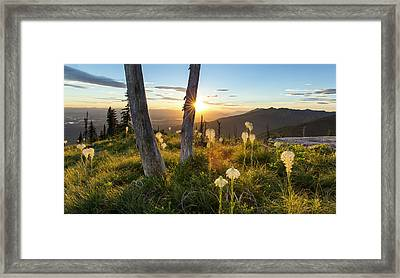 Beargrass At Sunset In The Swan Range Framed Print by Chuck Haney